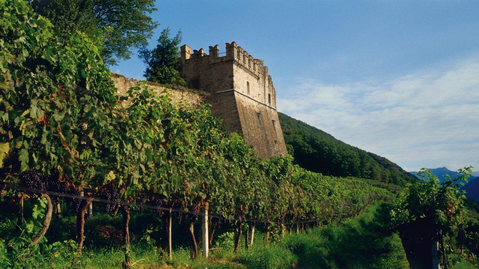 Tenuta Castello di Morcote publié dans le cadre de Go Out Magazine