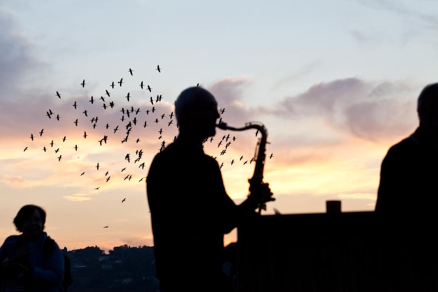 Aubes musicales, Bains des Pâquis (c)S. Rubio, Pour le plus grand bonheur des lève-tôt et des couchetrès-tard, les Aubes musicales promettent de donner du rythme aux levers de l'astre du jour durant presque tout le mois d'août. En effet, après une pause en 2017 dédiée à se réinventer (car décrit comme «victime de son succès» par ses organisateurs), le festival né dix ans plus tôt revient faire office de salut au soleil genevois. Dans le cadre bucolique des Bains des Pâquis, il sera donc question de profiter de toutes sortes de sonorités tout en entament sa matinée ou terminant sa nuit de la plus belle des façons, avec le soleil pointant sur l'horizon et inondant le lac Léman de ses rayons, dans une atmosphère bercée de la langueur d'un jour nouveau. A l'heure où nous mettons sous presse, la programmation n'est pas encore dévoilée, mais nul doute qu'elle saura satisfaire tous les amoureux de musique qui voudront profiter d'une parenthèse enchantée, hors du temps., go out magazine 2018